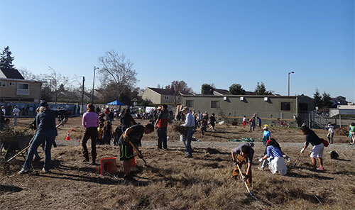 Sweeney Park's first community cleanup draws hundreds ...